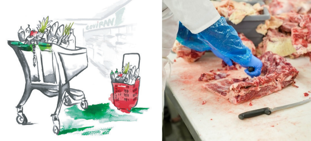 Portada curso Iniciación a la carnicería